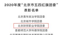 """奋斗是最靓丽的青春底色!我校团委荣获""""2020年度北京市五四红旗团委"""""""